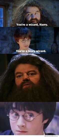 54 New Ideas For Funny Harry Potter Memes Awesome Hogwarts Hery Potter, Harry Potter Puns, Memes 9gag, Really Funny Memes, Funny Jokes, Funny Stuff, Hilarious Quotes, 9gag Funny, Movies Quotes