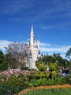 Disneyworld - Orlando, Florida. Want to go with my kids and Grandkids.