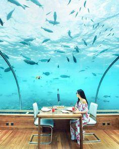 Underwater restaurant 👍👍