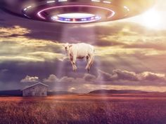 The National UFO Reporting Center keeps a list of all reported sightings, and Illinois had more than 150 last year.