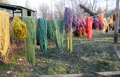 more naturally dyed yarn.