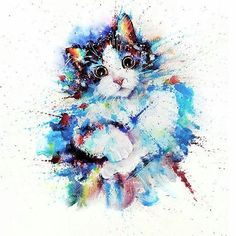 artistic_exposure_Colorful kitty portrait Tag someone who would love this. By @liviing Follow us @artistic_exposure_ !! Shared by @visual_konnect on IG