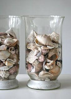 shell decor...