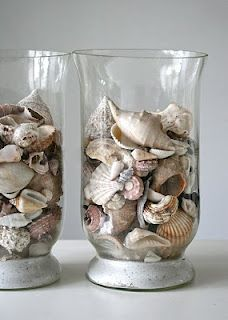 1000 images about hurricane vase ideas on pinterest Diy home decor with shells