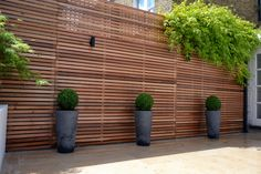 Cedar timber batten cladding trellis privacy screen. Cedar Batten privacy screen trellis with grey stone pots buxus balls and Jura Limestone paving. Contact anewgarden for more information