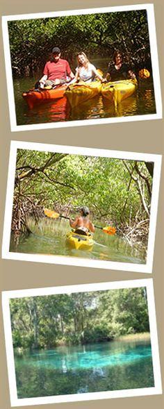 kayak left hand graphic - Almost Heaven kayak adventures - Sarasota