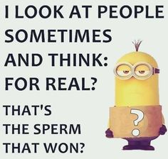 35 Funniest and Hilarious Minions Quotes so you can enjoy minions at the best ! ALSO READ: 30 Funny Minion banana Quotes ALSO READ: 30 Funny Evil Minions Quotes Funny Minion Memes, Minions Quotes, Funny Jokes, Fun Funny, Hilarious, Minion Humor, Funny Sayings, Funny Shit, Funny Stuff