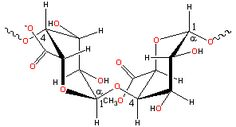 pectin representative structure of smooth bits