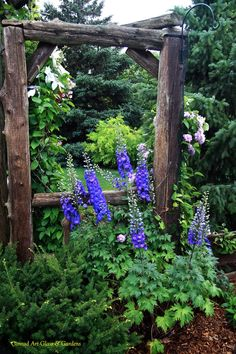 Love these rustic log posts with clematis growing up the sides on wire mesh along with the purple dianthus(?) in front Love Garden, Glass Garden, Dream Garden, Purple Garden, Rustic Gardens, Farm Gardens, Outdoor Gardens, Asiatic Lilies, Photos Voyages