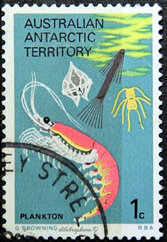 australian Antarctic Territory.  FOOD CHAIN (ESSENTIAL FOR SURVIVAL).  PLANKTON & KRILL SHRIMP.  L23 A7, Issued 1973 Aug 15, Perf. 13 1/2 x 13, 1c. /ldb.