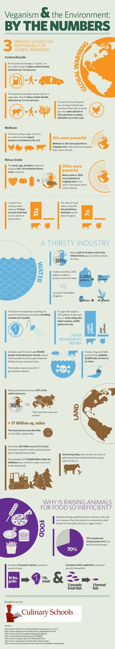 Veganism and the Environment by the numbers