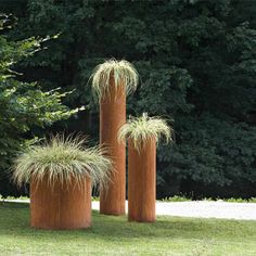 tube pots with ornamental grasses