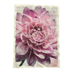Mo-Ca Voorjaar Poster A3 - bloem roze