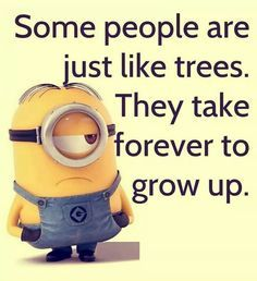 Minions are cute, Adorable and Funny ! Just like Minions, There memes are also extremely hilarious . So here are some very funny and cool minions memes, they will sure leave you laughing for a whi… Memes Humor, Funny Minion Memes, Minions Quotes, Funny Jokes, Hilarious, Humor Quotes, Minion Sayings, Minion Humor, Qoutes