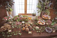 Enchanted Forest Birthday Party Ideas - Dessert table  Erin Harris Photography » Milwaukee Photographer | Newborn Family Senior Wedding Photographer