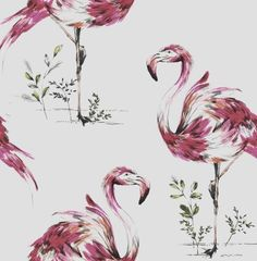 Flamingo Wallpaper-Hot Pink