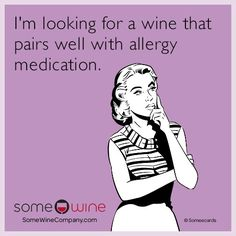 Free and Funny SomeWine Ecard: I'm looking for a wine that pairs well with allergy medication. Create and send your own custom SomeWine ecard. Mom Jokes, Mom Humor, Funny Jokes, Hilarious, Funny Shit, Funny Stuff, Funny Sayings, Funny Pics, Tgif