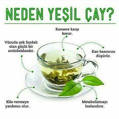 Neden Yeşil Çay? #yeşilçay #şifalıbitkiler #beslenme #sağlıkhaberleri