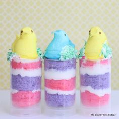 My spring push pop cupcakes are a perfect way to celebrate Easter and spring. Learn to make your own quick and easy peeps creations here.