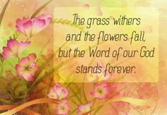 Isaiah 40:8 The grass withers, the flower fades, But the word of our God stands forever. #Agrainofmustardseed #ReadScripturesAloud