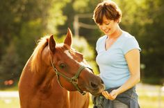 Learn about why the horse/human bond is so important.