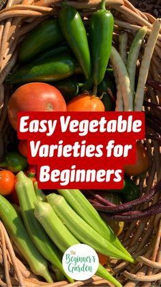 Vegetable Garden Planner, Backyard Vegetable Gardens, Container Gardening Vegetables, Veg Garden, Vegetable Garden Design, Planting Vegetables, Beginner Vegetable Garden, Easy Garden, Garden Art