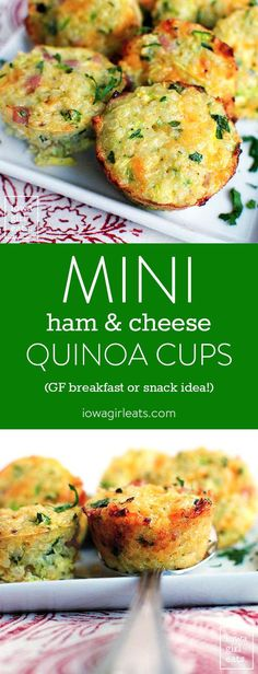 Mini Ham and Cheese Quinoa Cups are the perfect, poppable, gluten-free breakfast or snack recipe. Easy, delicious and loved by kids and adults alike! | iowagirleats.com