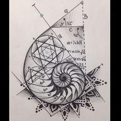 Resultado de imagen para espiral de fibonacci tatuaje significado