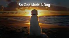"Sam on Twitter: ""WATCH! ""So God Made a Dog"" #DogsRule #GodIsGreat #DogsOfTwitter #LifeIsGood #CCOT https://t.co/H7MbENgumY https://t.co/burm7AdasM"""