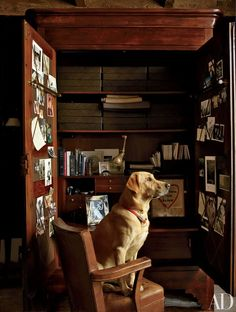 Sid the retriever is seated before an armoire, which was adapted for use as a desk, in the study of a New York apartment decorated in collaboration with Michael Neumann.