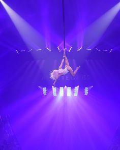 anniversaire cirque montpellier