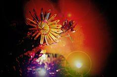 Vánoční atmosfera