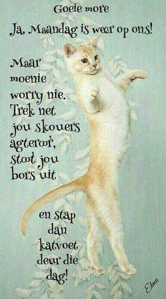 Lekker Dag, Goeie Nag, Goeie More, Afrikaans Quotes, Morning Greetings Quotes, Special Quotes, Good Night Quotes, Trek, Cute Animals
