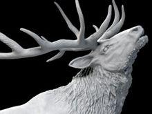 Wapiti 3d Modeling Programs, Traditional Sculptures, 3d Prints, Cinema 4d, Zbrush, 3d Design, Sculpture Art, Sculpting, Printing