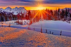 Download wallpaper winter fire and ice, mount rainier national ...