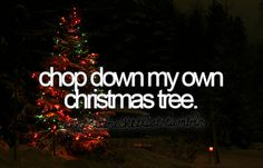Chop down my own Christmas Tree.