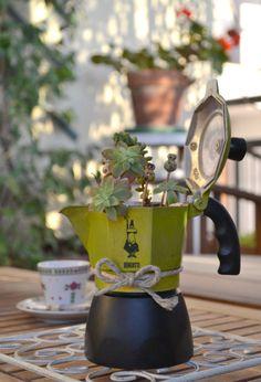 Quando germogliano anche le caffettiere, vuol dire che la bella stagione è arrivata davvero! http://www.lafigurina.com/