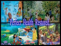 PERFECT HEALTH RESTORED  !!!!!!
