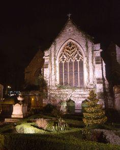 Night Lights- Garden Museum