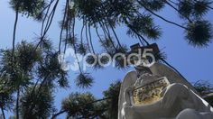 Mausoleum cementery Buenos Aires 2 - Stock Footage   by BucleFilms