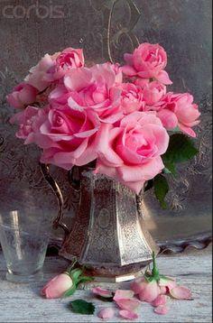 You searched for roses - gardenfuzzgarden.comgardenfuzzgarden.com