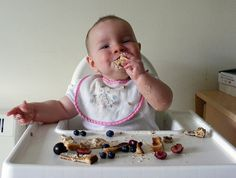 Baby Led Weaning Recipes and Ideas