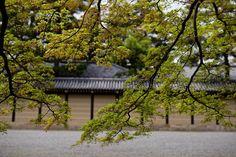 Kyoto Photowalk by D. Moritz Marutschke on 500px