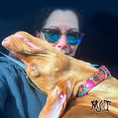 💕 I'm freaking my mom out 😱 Happy Friday Everyone... LUV Capri 👅 👉 to see Dog's Rule in all our collar styles 🐶 #dogsrule #gangstamutt #coolgraffiti #vizslapuppy #vizslalover #doglovers #mustlovedogs Merry Jane, Unique Dog Collars, Vizsla Puppies, Collar Styles, Happy Friday, Thor, Dog Lovers, Graffiti, Sunglasses Women