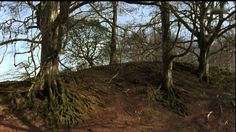 Landart at River deltas | Andy Goldsworthy | 90 mins