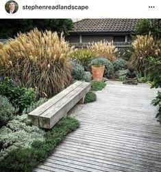 Love the lush native grasses. – Gartenbau Love the lush native grasses. Love the lush native grasses. Diy Garden, Garden Cottage, Garden Landscaping, Lush Garden, Garden Types, Balcony Garden, Garden Beds, Garden Plants, Terrace