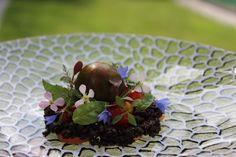 Succulents, Plants, Easy Meals, Flora, Succulent Plants, Plant, Planting