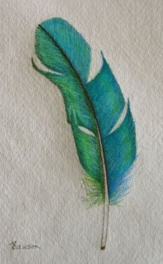 teal feather original coloured pencil drawing by anne4bags 2000 - Color Drawings