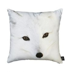 Category: Childrens, Vendor: By Nord. A beautiful kids cushion with a digital print of a cute Snow Fox in By Nords recognised cotton / Co. Fox Pillow, Fox Kids, Baby In Snow, Sheep Wool, Hello Gorgeous, Beautiful Children, Linen Bedding, Cotton Canvas, Scandinavian