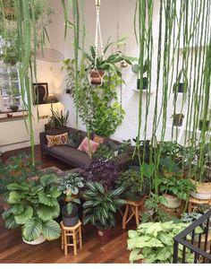 456 best atrium and indoor gardens images in 2019 rh pinterest com